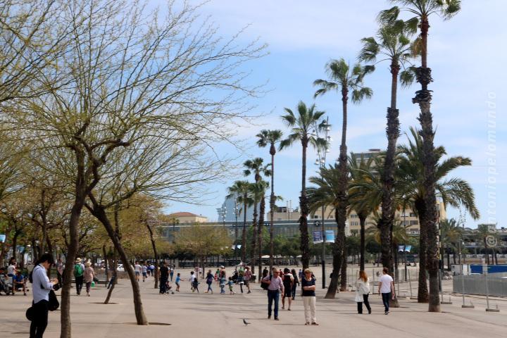 Praia Barceloneta Espanha