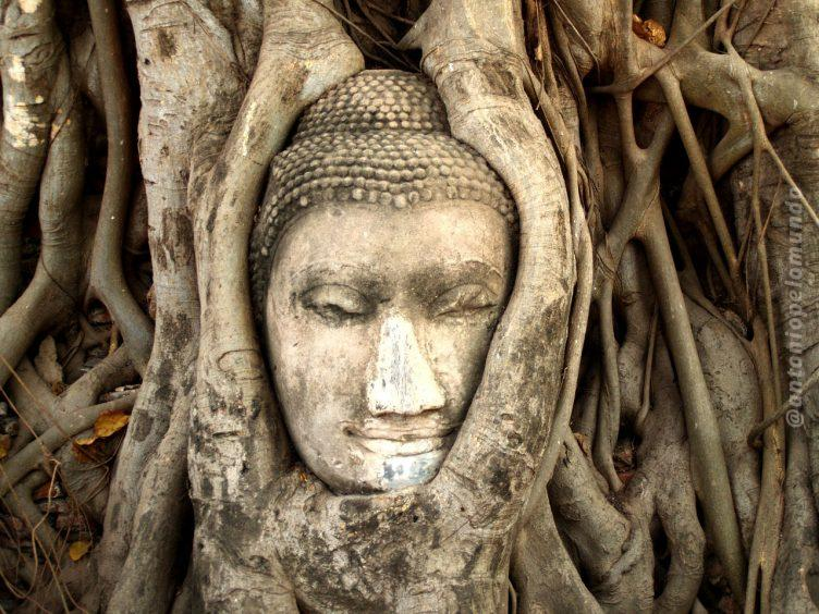 Ayutthaya - Foto : Banco de imagens