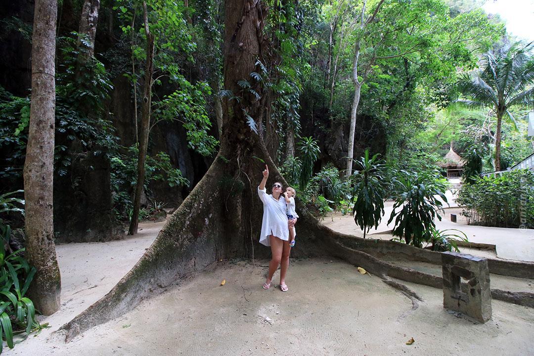 Lagen Island - El Nido Resorts