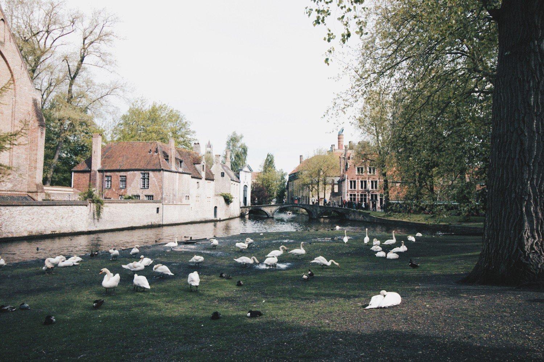 Bruges com crianças- Bélgica