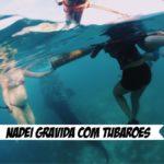 Mergulho com tubarões baleias em Cebu, nas Filipinas